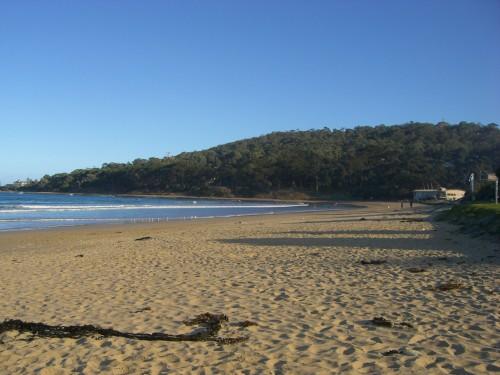 lorne beach victoria australia