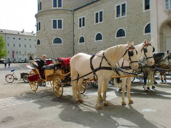horse and carriage ride salzburg austria