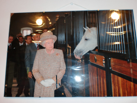 Photo of the Queen at Lipica Stud Farm, Slovenia