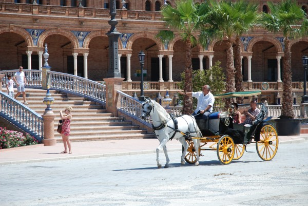 Horse and Carriage at Plaza de Espana in Seville, Spain