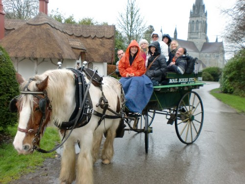 Horse and Carriage Killarney National Park