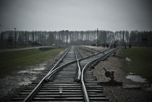 Auschwitz Birkenau Train Track