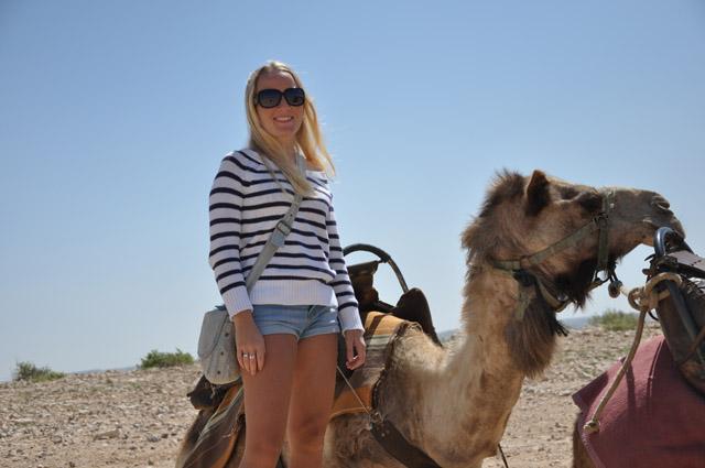 Pommie Travels in the Negev Desert, Israel