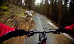 Mountain Biking Coed-y-Brenin