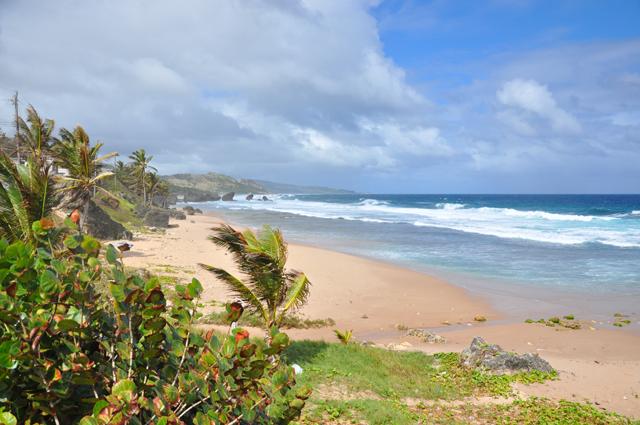 Soup Bowl Surf Spot Barbados
