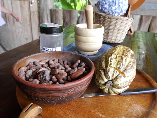 Cocoa Costa Rica