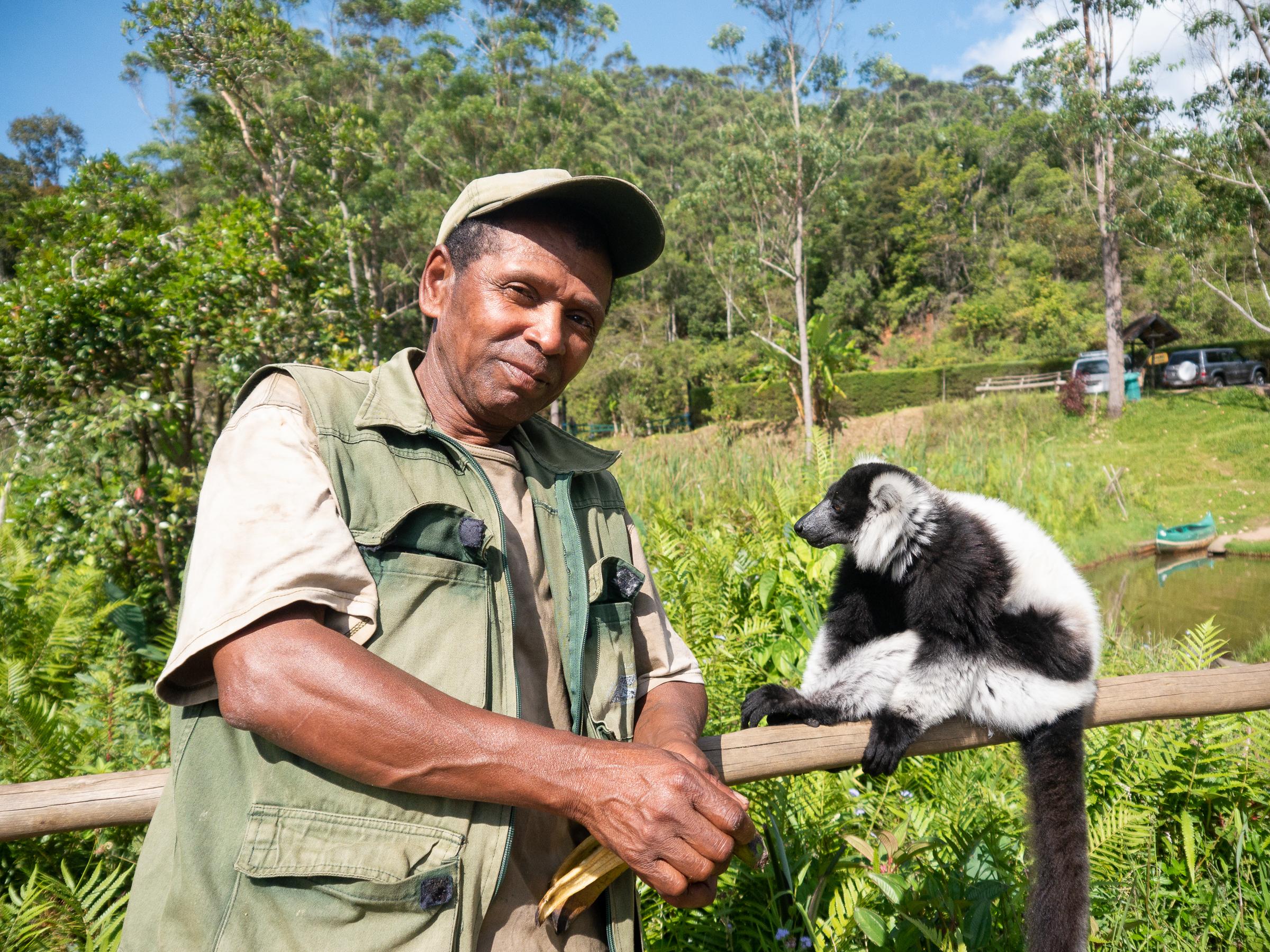 Lemur Island Vakona Forest Madagascar